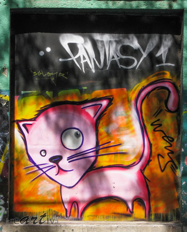 """Gato """"Rosa"""", Santiago Chile 2009."""